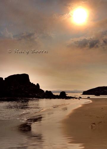 Aug wk 1 - Harris Beach copy 2