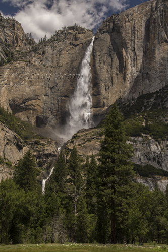 Yosemite Falls from Valley floor.