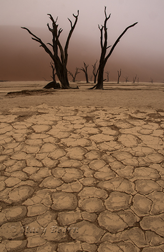dunes-deadvlei-copy