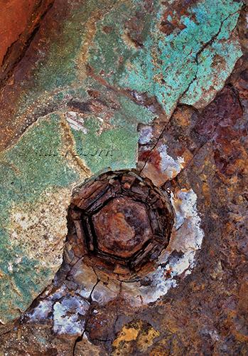 oct-1-rust-1-web
